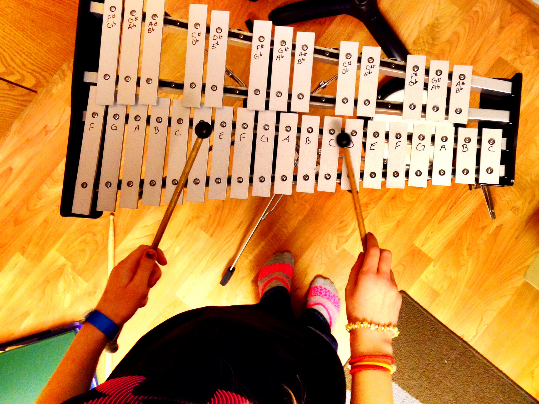 Best Glockenspiels for Beginner Home Practice