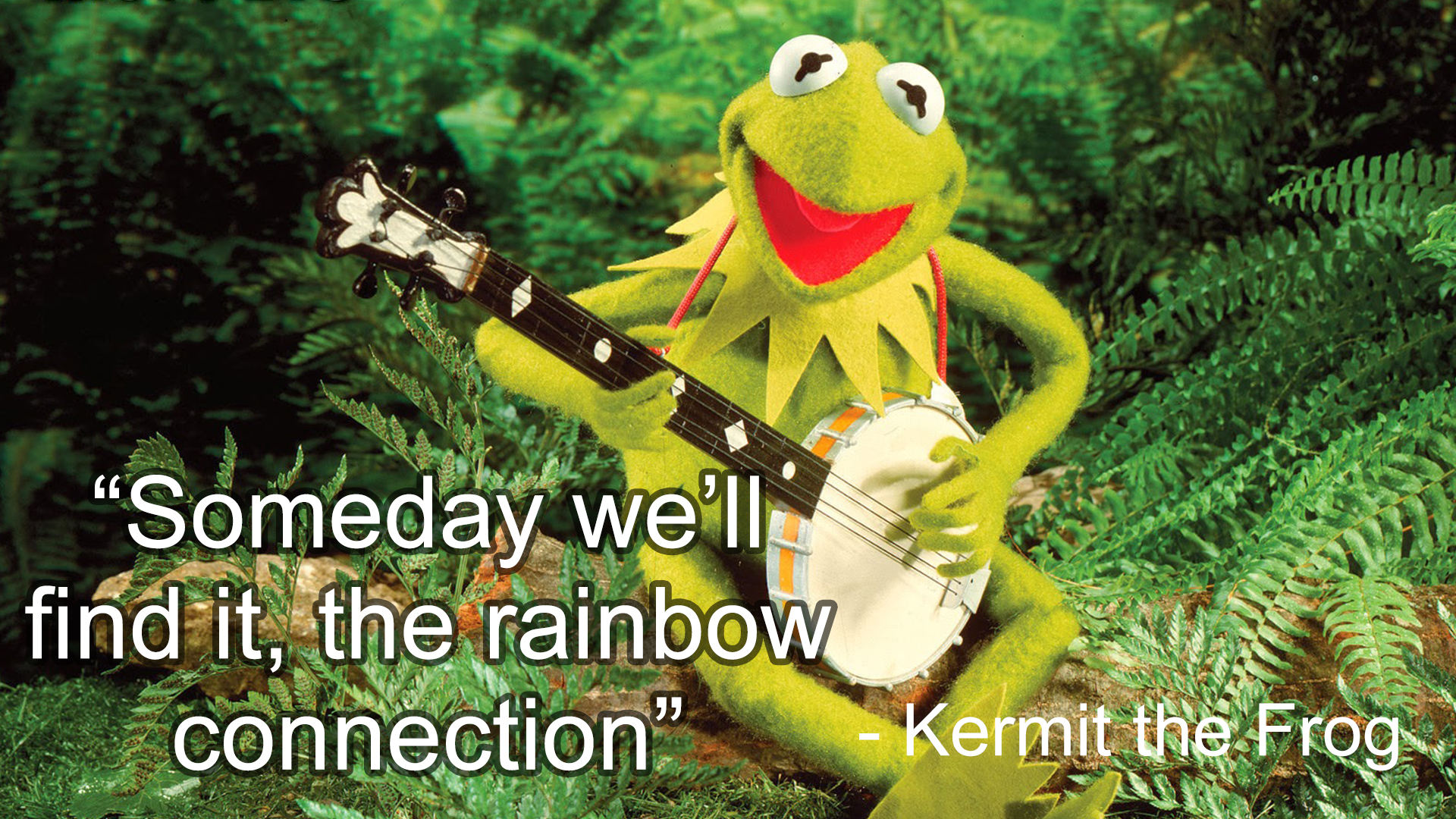 Rainbow Connection: A Family Music Sing & Play Along